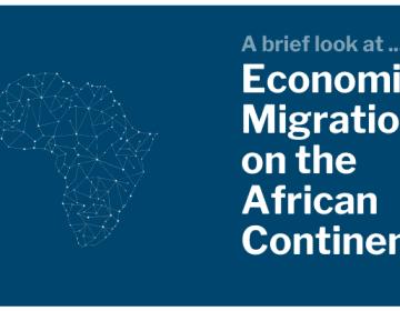 Scalabrini Centre of Cape Town Africa Economic Migration Brief 1